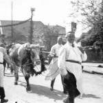 Use Kermesse 1930 (4)