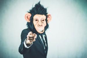 monkey-2710657_960_720